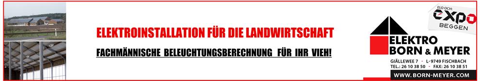 Born & Meyer Banner Werbung